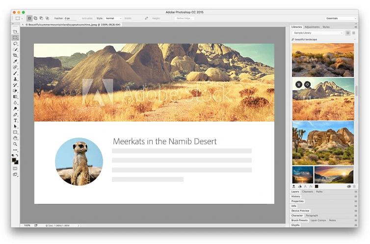 Adobe Stock watermark